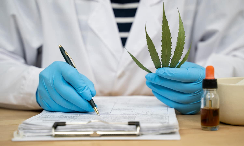 VA Mental Health Commission Recommends Federal Marijuana Research