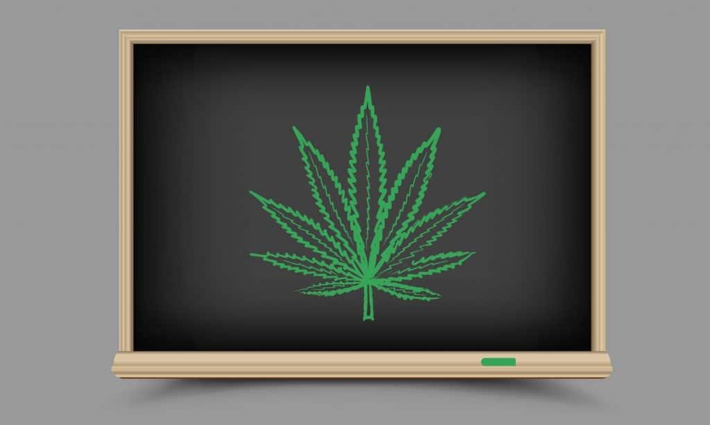 RIP Lester Grinspoon: The Forbidden Cannabis Professor