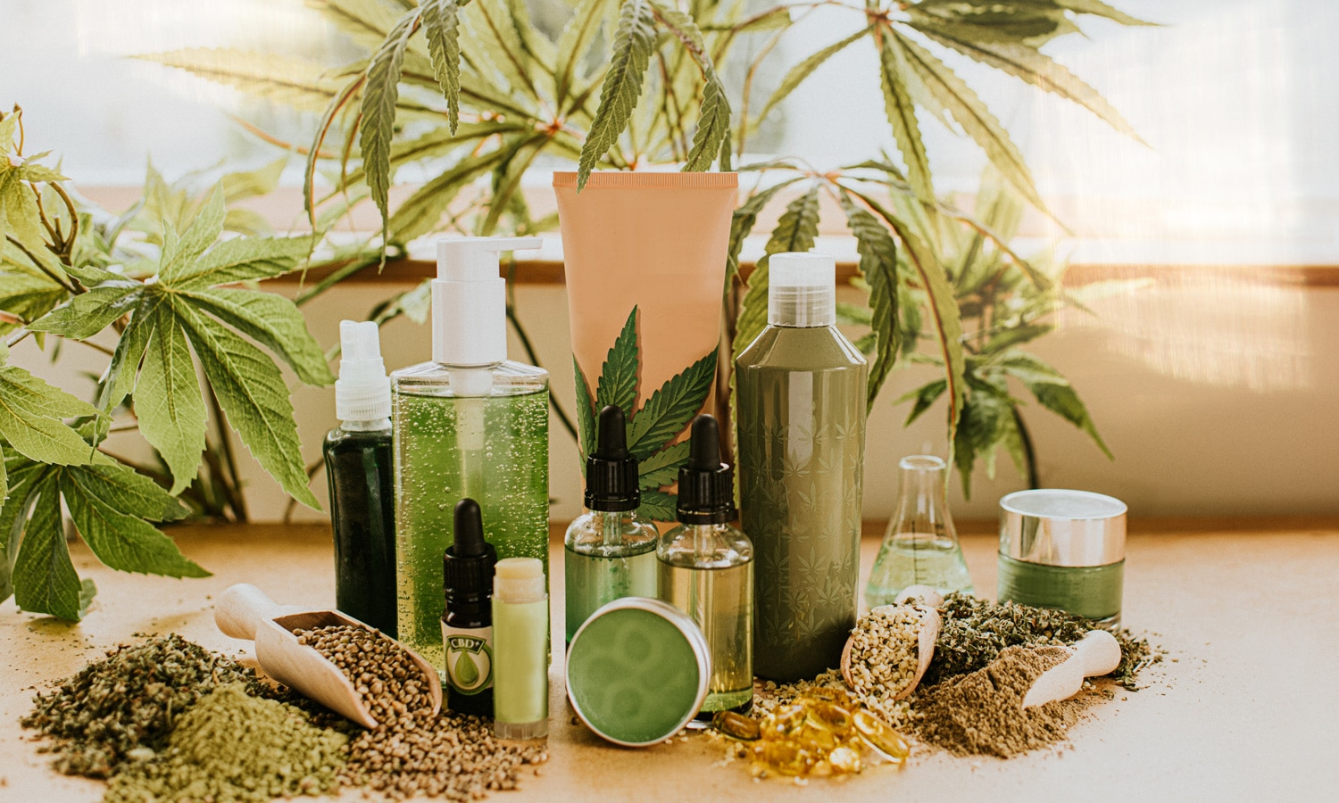 Dermatologists Chime In On The Effectiveness Of CBD Beauty Products