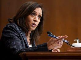 Kamala Harris On Marijuana and How Cannabis Industry Reacting To Biden's VP Pick
