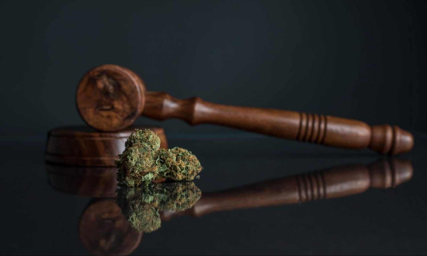 A Right-Leaning Supreme Court Won't Impede Cannabis Reform, Legal Experts Say