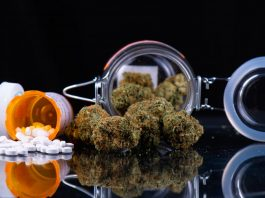 Cannabis And Pain Management: Is Alternative Plant Medicine Becoming The New Norm?