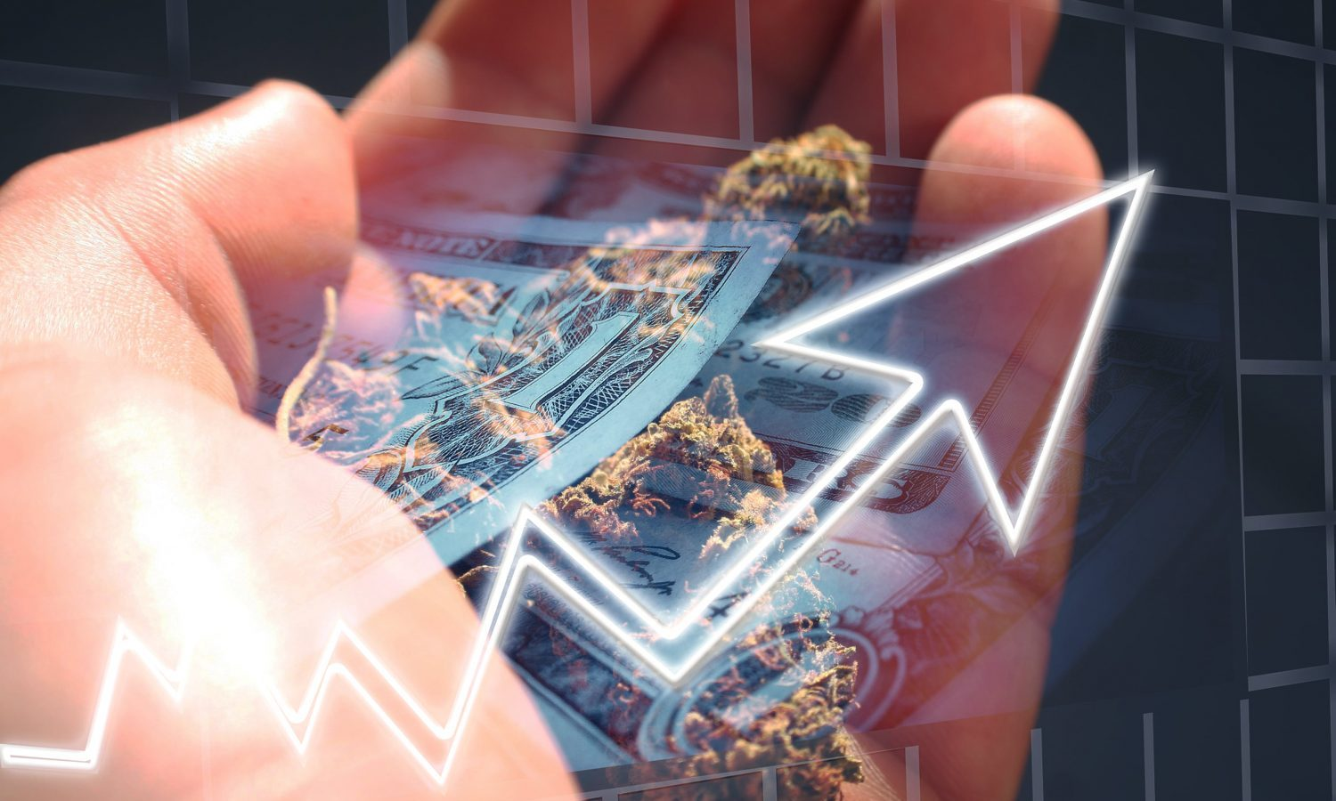 Existence Of Cannabis Investment Boom Remains Up For Debate, Say Industry Insiders