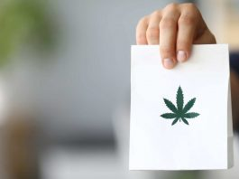 Green Wednesday Cannabis Sales Blow Away Black Friday