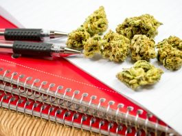 We Need to Educate Children And Adults About 'Drug Education'