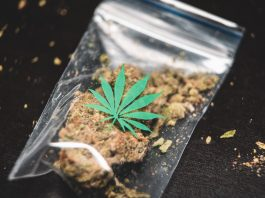 Global Easing On Cannabis Could Jumpstart Markets