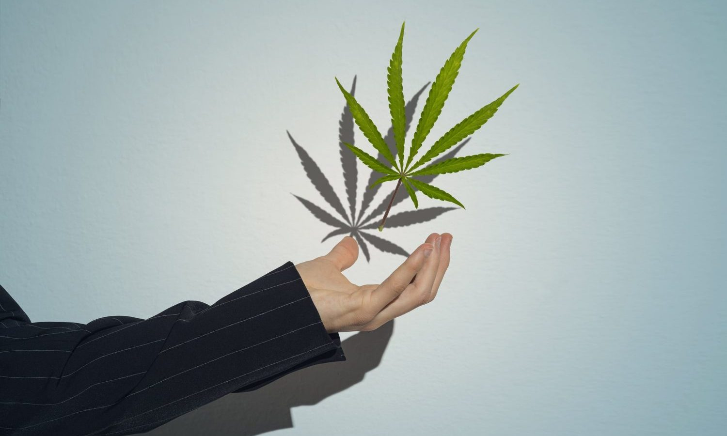 Cannabis Job Outlook In 2021 Is 'Strong' Despite Suffering Layoffs Throughout 2020