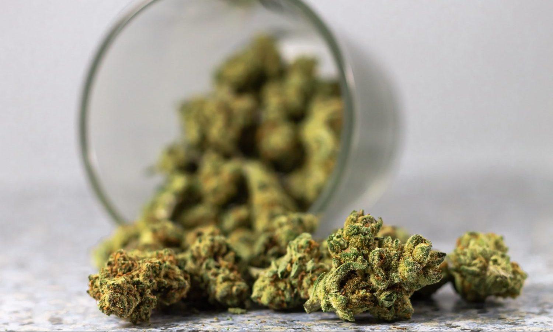 Survey Says America's Favorite Way To Kick Opiates Is Cannabis