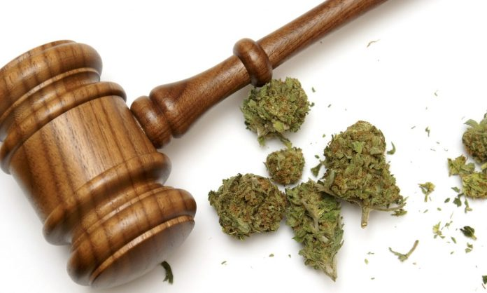 Why Does Congress Need Two Years To Federally Legalize Marijuana?