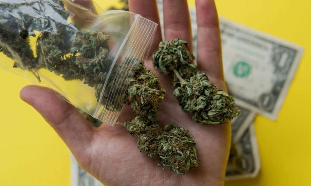 how much does weed cost