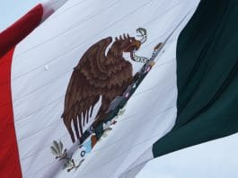 Mexical Cartels Are Now Smuggling Cannabis Oil