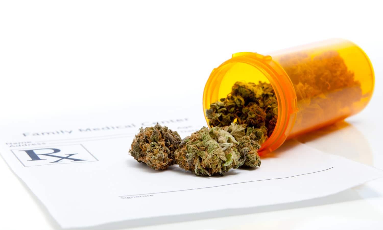 Pharmacy Students Lack Knowledge, Education To Prescribe Medical Marijuana