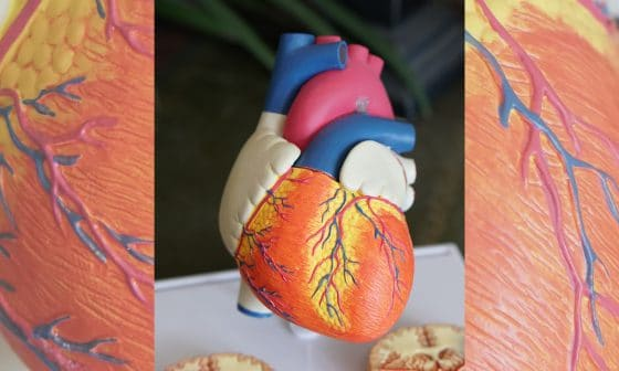 What Heart Patients Should Know Before Smoking Marijuana