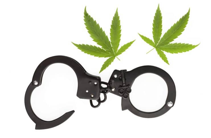 Why Marijuana Prosecutions Are Declining Across The Country
