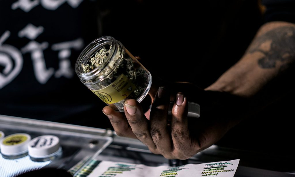 How To Land A High Paying Career In Cannabis, According to Experts