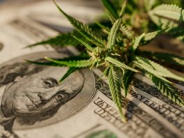 Will We Finally Have Free Trade For Marijuana After Legalization?