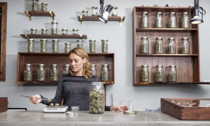 Setting Equal Standards For Women In The Cannabis Industry