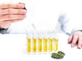 DEA Seeks To Expand Marijuana Research Opportunities