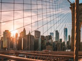 New York Becomes 15th State To Legalize Recreational Cannabis