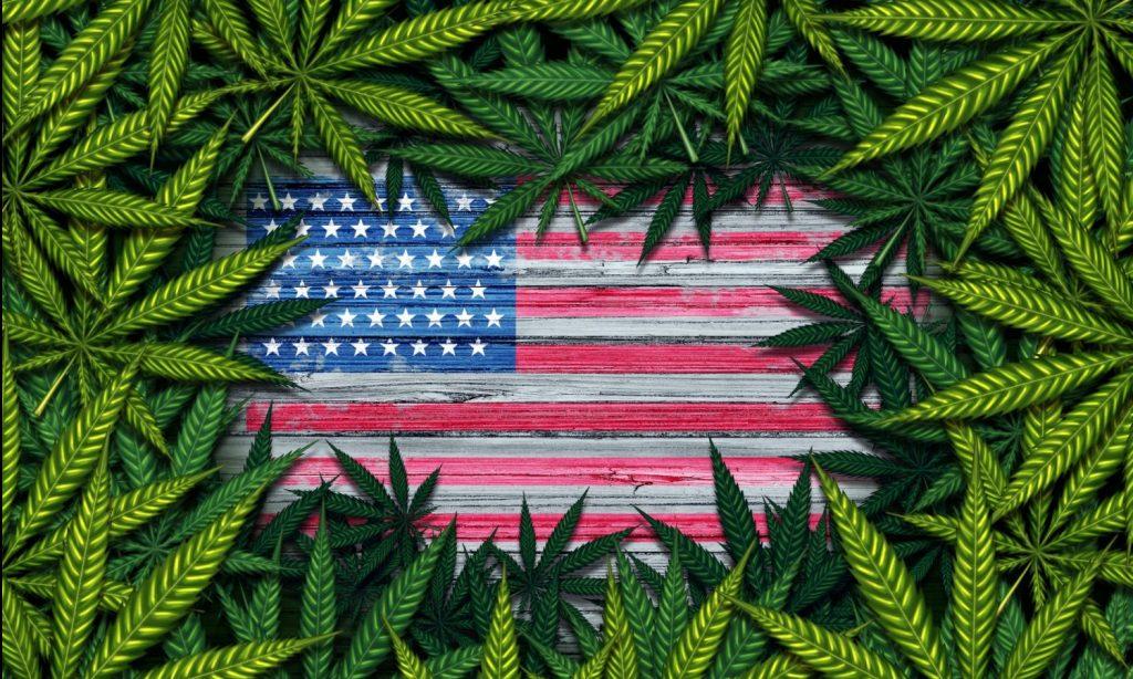 Congress Looks At Bill To Research Marijuana Legalization