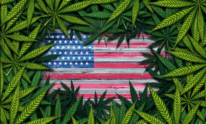 Congress Looks At Bill To Research Marijuana Legalization