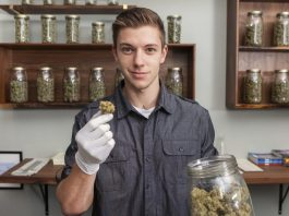 Should Budtenders Be Required To Educate Public Over Health Effects Of Cannabis?
