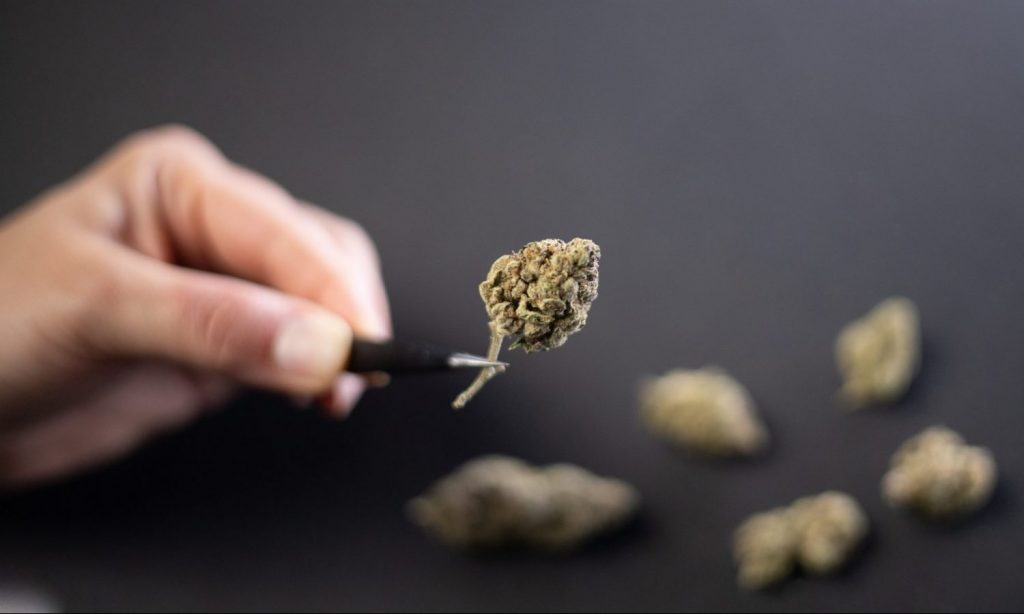 What Can Marijuana Strain Names Tell You About A Product?