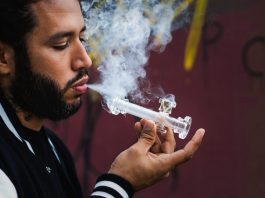 Bongs & Pipes: What's The Best Option For New Smokers?