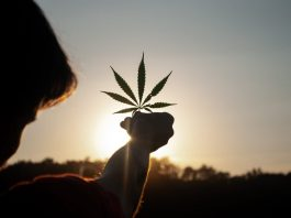 Marijuana Can Be Addictive — Here's How To Spot The Signs Of Cannabis Use Disorder