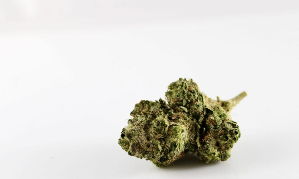 Rehydrating Marijuana: How To Bring Your Stale Weed Back To Life