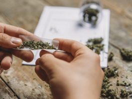 MORE Act Reintroduced In House As Senate Readies Its Own Cannabis Reform Legislation