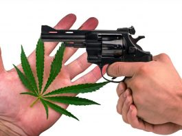 Should Budtenders Be Allowed To Carry Guns?