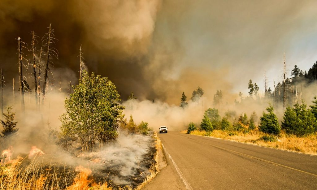 Fire Season Is Coming — Here's What That Means For Canna-Businesses