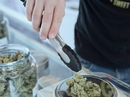 Can You Use Your Medical Marijuana Card In Other States?