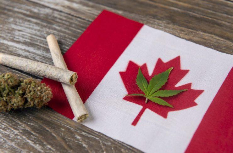 canadian cannabis