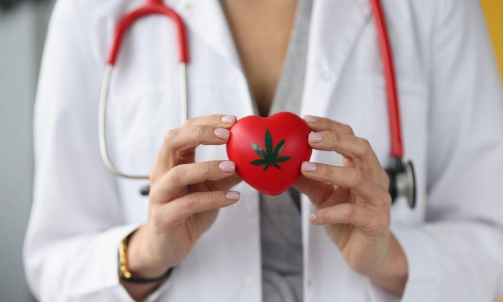 cannabis heart health