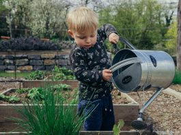 Interested In Gardening? Here Are 5 Tips That Can Help You Get Started