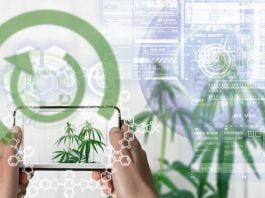 cannabis technology