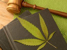legal cannabis marijuana