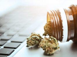 online cannabis