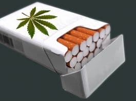 Hemp Cigarettes Are Some Of The Fastest Growing Hemp Products