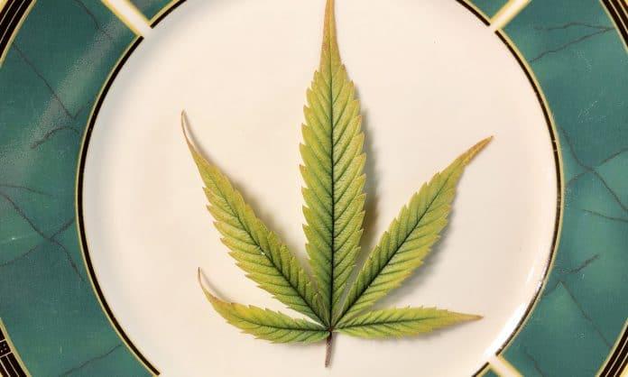 What Happens When You Eat Raw Marijuana?