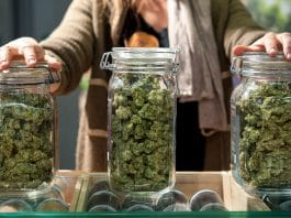 Businesses Are Better In States With Legal Marijuana